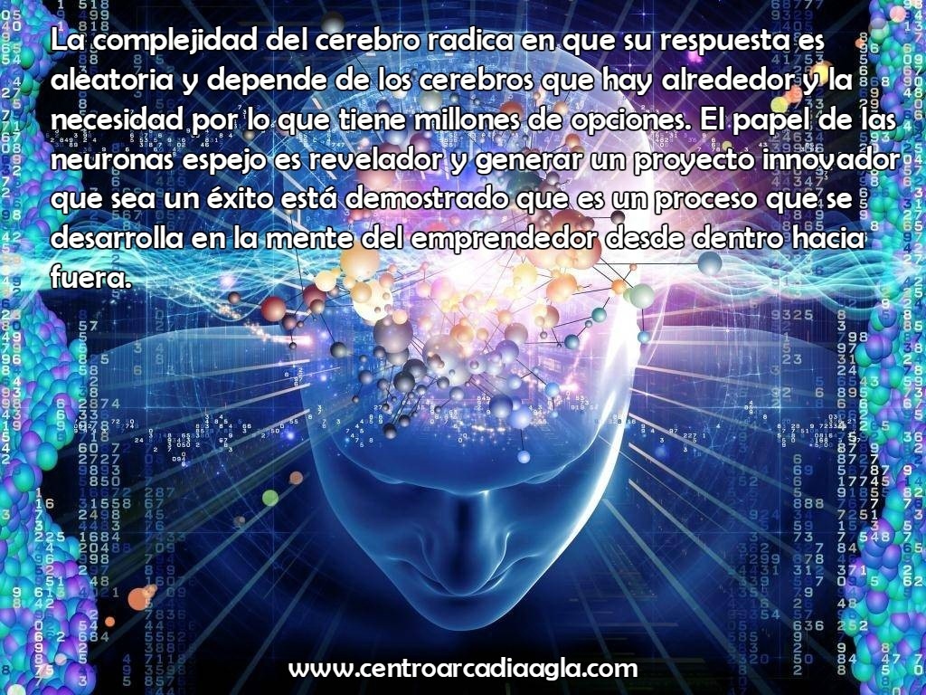1 Neurociencia AGLA